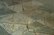 Marble floor tile installation contractor in Northern Colorado